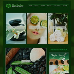 wordpress-spa-theme